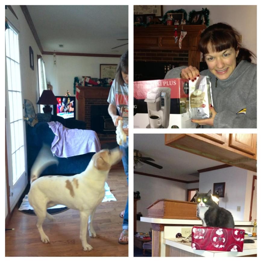 My dog Mr. George ready for his bone; Me with my  new coffee maker and Archer Farm's Gingerbread Toffee; My kitty Cody ready for his new water fountain